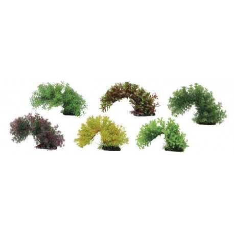 Rastlinka Branch 15-20cm